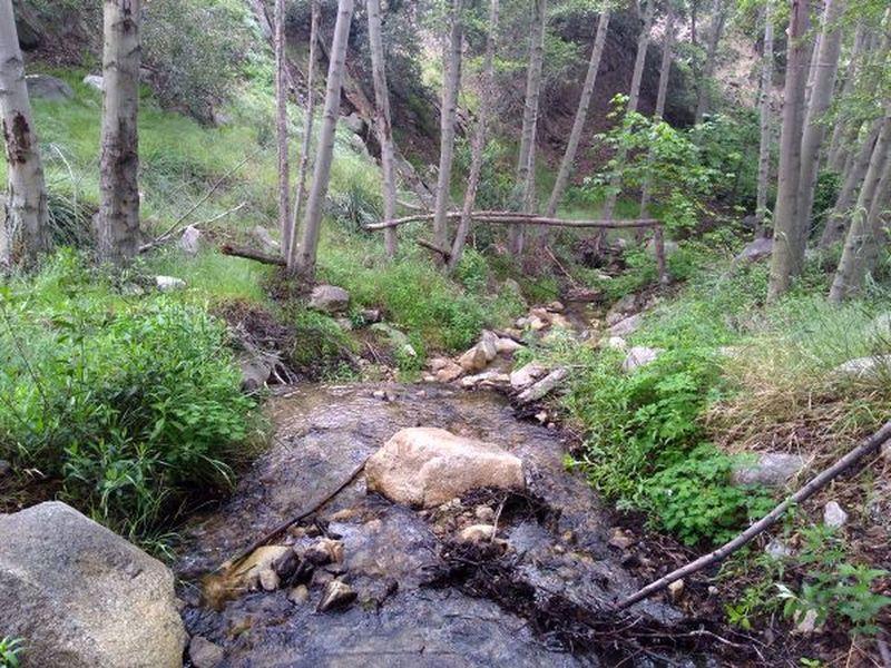 East Fork of Hemlock Creek, San Bernardino Mountains