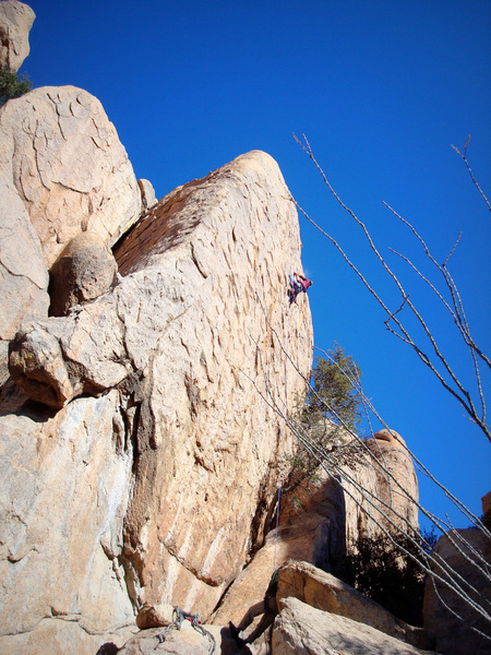 David Bloom climbing a 5.12 on the west side.