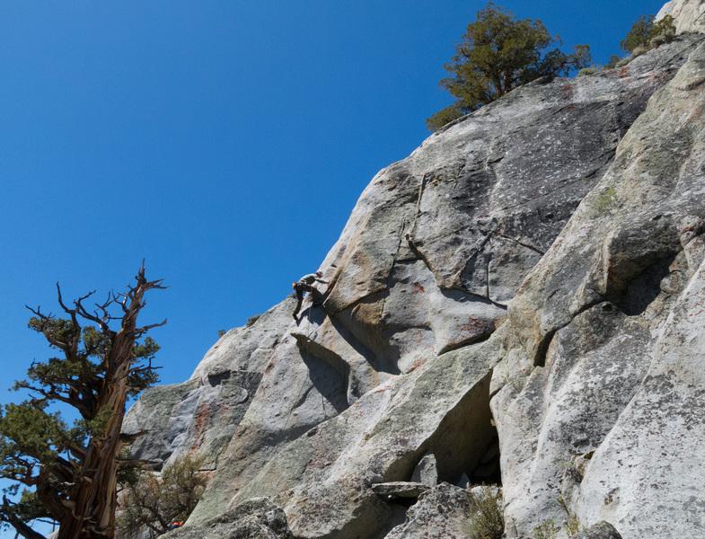 Climber on The Truffle Shuffle