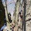 [[Glenn Ritter]] enjoying Buzzard 31 years after first climbing it as a teen.