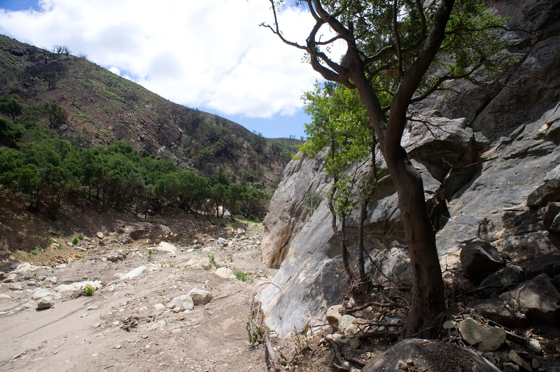 San Ysidro - May 25, 2018