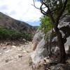 San Ysidro - May 25, 2018<br> The view looking toward the stream from near the base of Orangahang.
