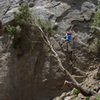 San Ysidro Canyon - May 28, 2018<br> Bryson climbs Face Lift. Of the three variations to the start of this route, only the right-most (and easiest) start is still climbable. An oak tree has been pushed up against the wall blocking the other two.