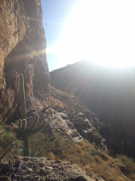 Pinhead wall in the afternoon. Hairpin turn area of Mt. Lemmon. Excellent climbing to be had here.