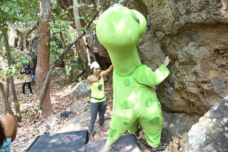 Who say Dino can't climb