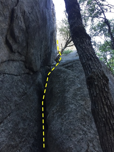 The chimney at the start of the route. Head up past the two trees growing in the groove to the steep wide hand crack for the crux (barely visible at the back of the photo).