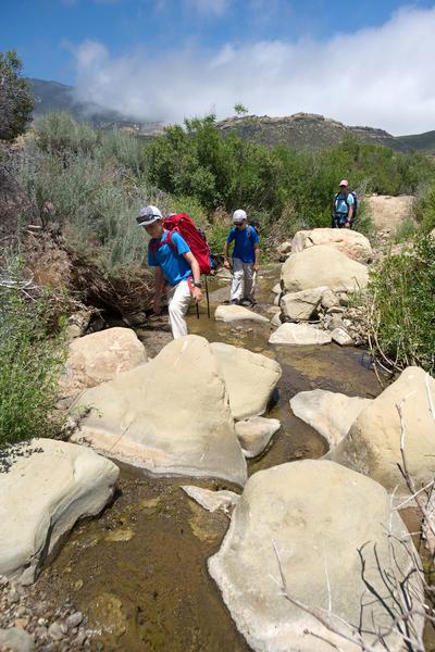 Walking up the creek in Ladybug Canyon.
