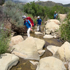 Walking up the creek in Ladybug Canyon.