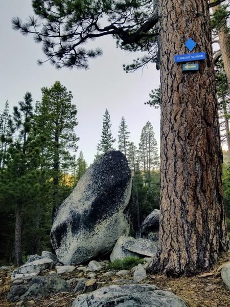 Lower Benwood Meadow boulder field