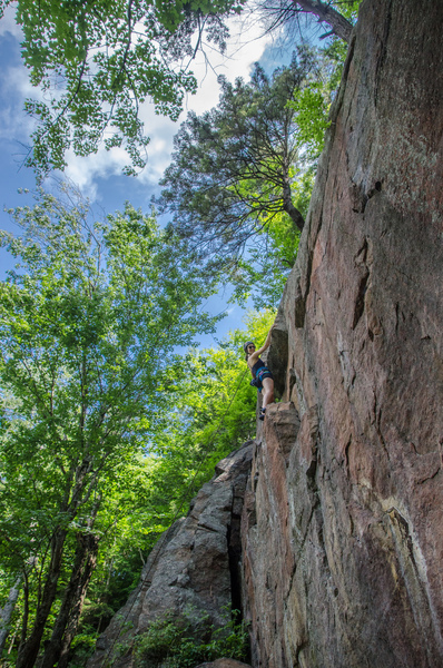 Climbs the wide crack on the left then traverse ledge and up the face to the right of the pine tree
