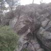 Tree anchor, no bolts