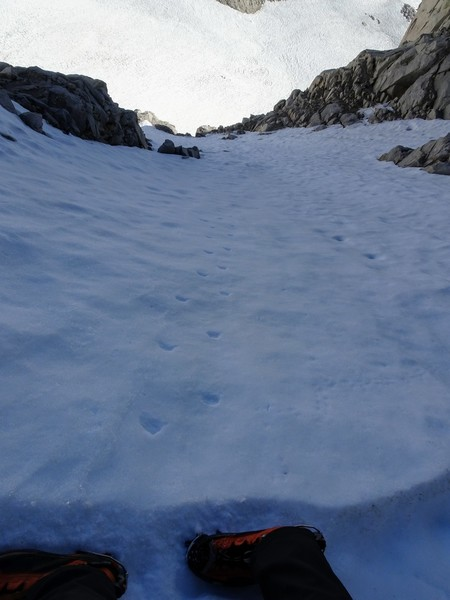 Looking down from ~1/2 way up the snowfield on Mt Dade's North Face