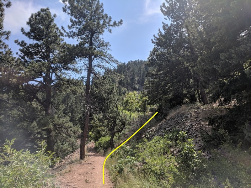 This is a shot of the Mesa Trail facing South near where the faint trail breaks away. It's about 100 yards South on the trail of the small canyon/wash and maybe 250 yards south of the Kohler Mesa Junction. The yellow line is an estimate. Hope it helps!