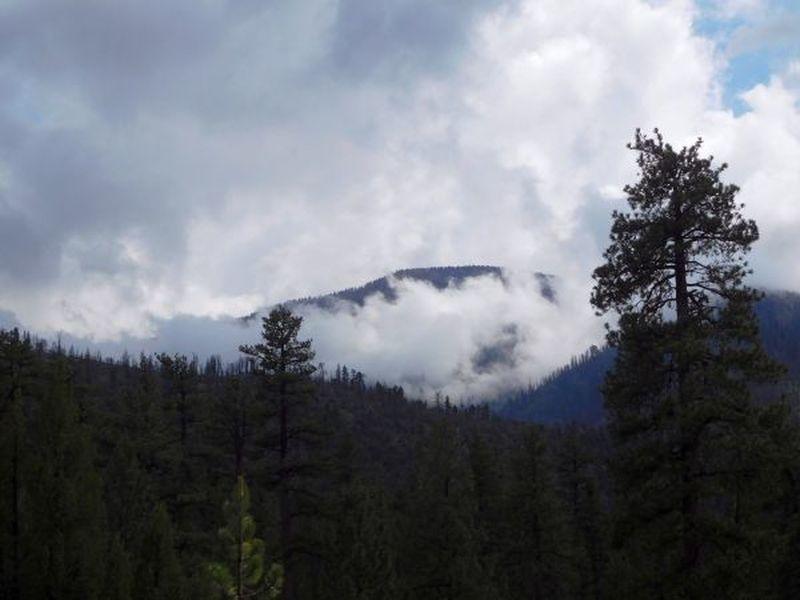Looking towards Mt. San Gorgonio from Hwy 38, San Bernardino Mountains