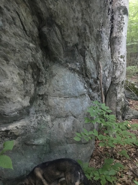 """Right boulder, downhill side (with overhang).  Walking stick is 6'4"""".  Nice features and holds."""