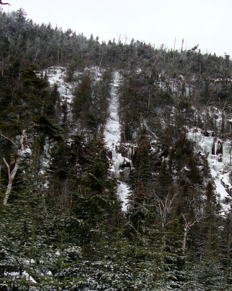 Little Marcy Gully (center of photo) as viewed from the trail. Photo by Ken Hebb.