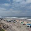 Torrey Pines State Beach, San Diego County