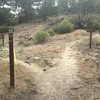 "Follow the right path towards ""Mt. Waterman Trail, Twin Peaks Saddle, and Buckhorn."""