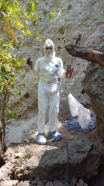 8/20/2016 poison oak clearing