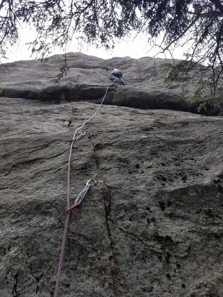 Cory Noss romancing the stone