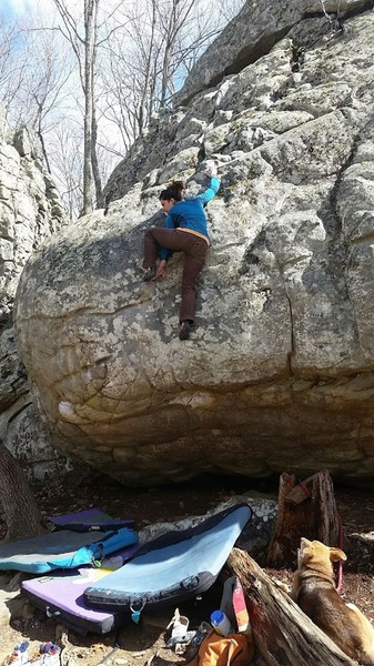 There was a tree blocking this boulder for some time, it is accessible and well worth it. The descent is the crux