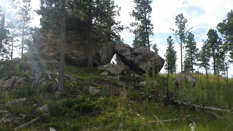 View of the boulders from the road, not much of a path to get there but it works.