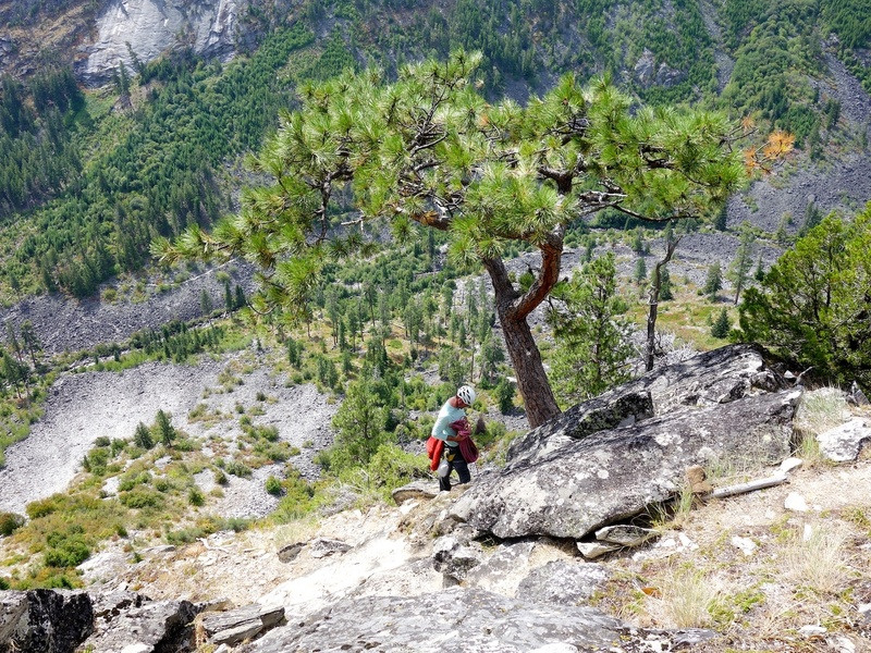 The bolted rap station is on the rock beside this distinct and lovely tree. One rap to ground with double ropes.