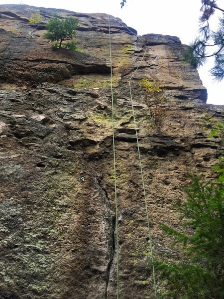 The rope is on the line. It is easy to find as it is the only fully sport route at Neanderthal Wall to date.