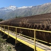 """Amazing """"tubería"""" on the way up to Pared Stuardo.  It was constructed something like a hundred years ago and is constructed from wood boards held together with the giant metal rings"""