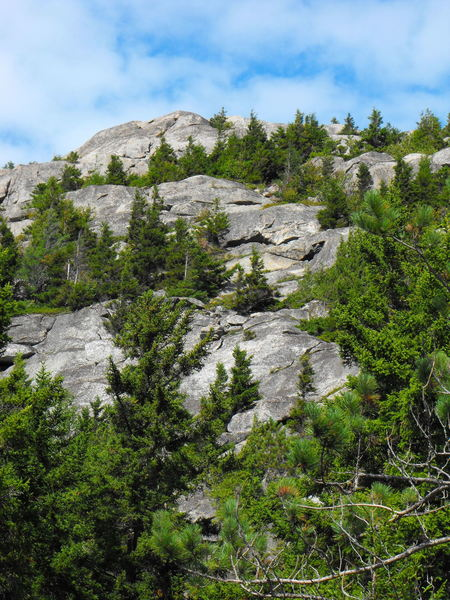 Numerous rocky outcroppings.