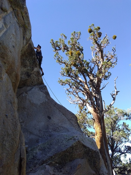Jorden at the crux of Endless Sky (5.8),  Onyx Summit Crag