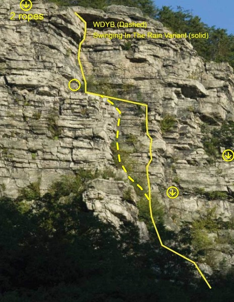 Route might hug the dihedral all the way up, But route shown here goes left of pine at 50' then follows that crack on left till it ends then traversing straight left to the big shelf (belay here if your smart) Take the wide crack dihedral up from there.