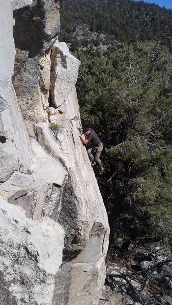 Jorden Darr pulling onto the slab of Branch Out!
