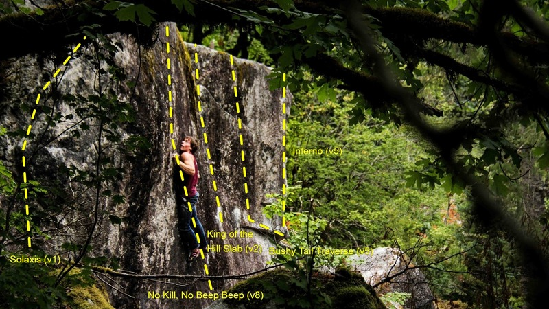 The downhill face of the King of the Hill Boulder. Jake Love working his way up No Kill, No Beep Beep (v8)