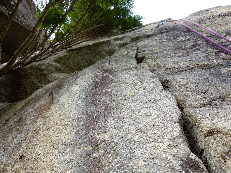 Pitch 4: Looking up Voyage of the Majestic Glass-Eyed Tuna start to the left. Good gear and fingerlocks. Belay below the tree. I would probabaly recommend this start for Pitch 4 to keep the difficulty of this pitch in line with the rest of the route.