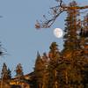 Moonrise.<br> <br> Photo by Dalton Johnson<br> www.daltonjohnsonmedia.com<br> @daltonjohnsonmedia