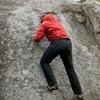 Climbing China Cat