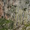 """""""1. Mutton Bustin' (VI-/5c+/5.10a) <br> 2. Mr. Toad (VI-/5c/5.9) <br> 3. Lady Bird (VI-/6a/5.10b) <br> 4. Goat (VI-/5c+/5.10a) <br> 5. The Social Ladder (VI-/5c/5.9)"""""""