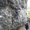 Phil top roping 5.8 project on Amusement Wall