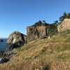 From the trail... the Pacific Ocean Cliff is the wall on the upper right. Absolute jungle getting back there