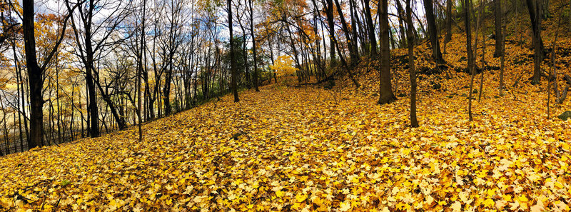 Carpeted approach to Barn Bluff in late October 2018.