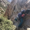 Accessing the base of the climb from the left side of the buttress can leave you in a prickly situation (seen here). Its better to approach the base from the right side.