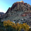 Fall colors on the hike out from First Creek Canyon