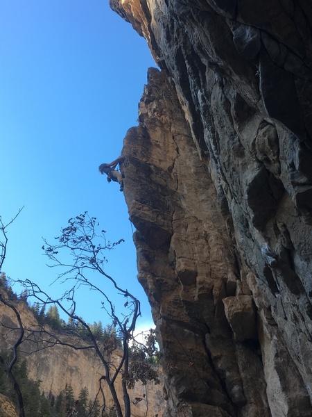 Shane climbing the arete.