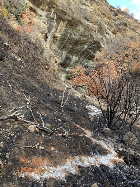 Approach and surrounding areas were completely burned in August. This was taken on Thanksgiving, 2018. Smelled like a campfire but rock/bolts were fine from what we saw!
