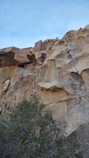 Hannah climbing into the grainy section.