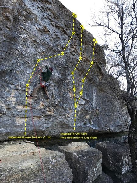 Climber on Unfinished Monkey Business
