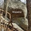 Wasena