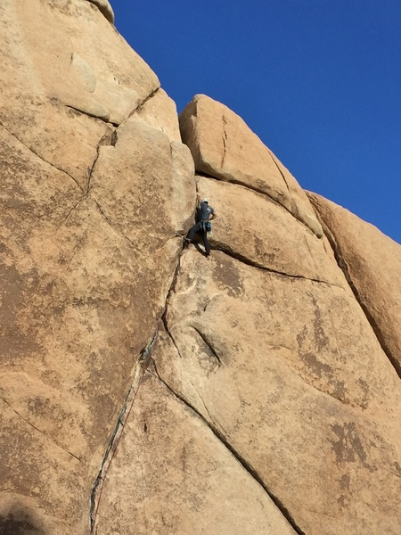 crux business at the top