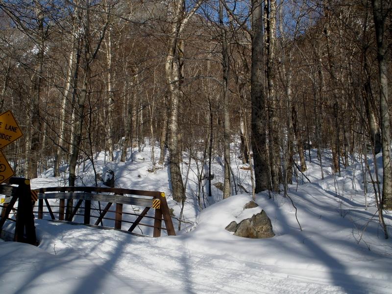 Wooden bridge on Bike Path over the correct drainage